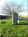SC3171 : Millennium stone at Santon by Richard Hoare