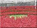 TQ3380 : Poppies Tower 2 by Bill Nicholls