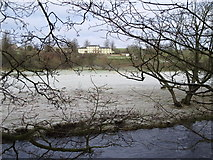 NY6366 : Frosty haugh by the River Irthing by Mike Quinn