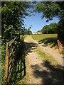 SX5078 : Track to barn, Mary Tavy by Derek Harper