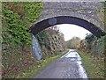 SK1771 : Footbridge over The Monsal Trail by Steve  Fareham