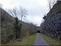 SK1272 : The Eastern portal entrance to Rusher cutting tunnel by Steve  Fareham