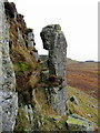 NY7969 : Whin Sill pillar, Kennel Crags by Andrew Curtis