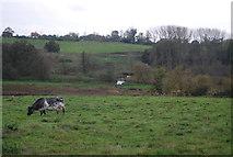 TM2247 : River Fynn by N Chadwick