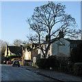 TL4058 : Coton: winter sunlight by John Sutton