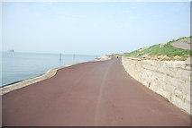 SZ6497 : The Promenade, Southsea (Solent Way) by N Chadwick