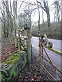 SE0720 : Gap-stile at Branch Road on a branch of Ripponden FP75 by Humphrey Bolton