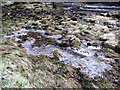 NY6368 : Ice patterns by the River Irthing by Mike Quinn