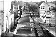 N1838 : Beet train, Moate (November 1981) by Albert Bridge