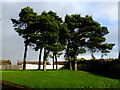 H4672 : Open grassed area, Knockgreenan, Omagh by Kenneth  Allen