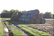 TG0509 : Stacked bales by N Chadwick