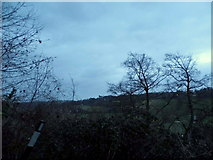 TQ3557 : View from Bug Hill, Warlingham by David Howard