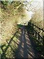 SP9310 : Strong shadows on The Ridgeway by Rob Farrow