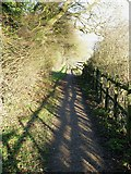 SP9310 : Strong shadows on The Ridgeway by Rob Farrow