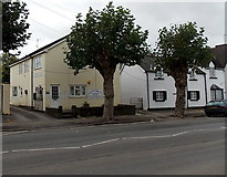 SO5012 : Monnow Bridge Veterinary Surgery in Monmouth by Jaggery