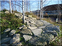TQ3785 : Landscaping in the Queen Elizabeth Olympic Park by Marathon