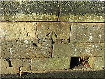 SJ3350 : Bench mark in Chester Street, Wrexham by John S Turner