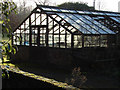 SU9561 : Derelict glass house by Alan Hunt