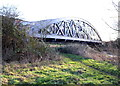 SU5294 : Railway bridge over the River Thames and Thames Path by Roger Templeman