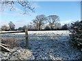SJ4462 : Farmland east of Sandy Lane by Christine Johnstone