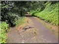 SE0825 : Path junction, Snake Hill Wood by Derek Harper