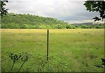 SE0726 : Field by Brackenbed Sports Park by Derek Harper