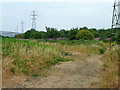 TQ0380 : Path and pylons near Iver by Robin Webster