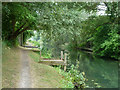 TQ0380 : Small staging, Slough Arm, Grand Union Canal by Robin Webster