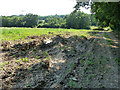 TQ0285 : Damp patch at field edge by Robin Webster