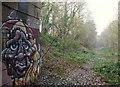 SK5650 : Near A60/B6011 Junction, Burntstump, Notts. by David Hallam-Jones