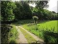 SE0626 : Bridleway past Ramsden Wood by Derek Harper