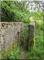 SE0528 : Path near Mixenden by Derek Harper