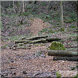 SE2436 : Felled timber, Toads Hole Wood, Bramley Fall Park by Rich Tea