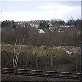 SE2436 : Looking across the railway by Rich Tea