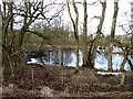 NY6760 : Pond beside the South Tyne Trail by Oliver Dixon