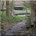 SE2536 : Steps down to Kirkstall Fall Locks, Bramley Fall Park by Rich Tea