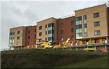 SJ8545 : Royal Stoke University Hospital: air ambulance on helipad by Jonathan Hutchins