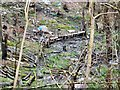 SJ9494 : Debris at the bottom of Gower Hey Brook Valley by Gerald England