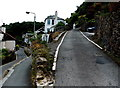 SX8750 : Swannaton Road, Dartmouth by Jaggery