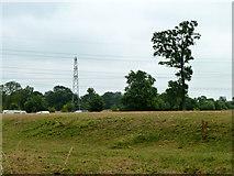 TQ0481 : Grassy bank near Huntsmoor Farm by Robin Webster