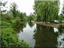 TQ0481 : River Colne by Robin Webster
