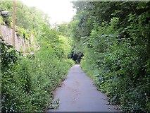 SJ6903 : Railway trackbed by Richard Webb