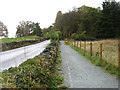 NY3602 : New footpath beside the B5286 by David Purchase