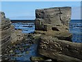 HY6728 : Coastline, Grice Ness, Stronsay, Orkney by Claire Pegrum