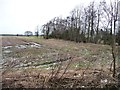 SE5229 : Waterlogged field, north of Hillam Common Lane by Christine Johnstone
