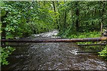 NY4020 : Aira Force Waterfall, Cumbria by Christine Matthews