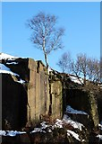 SK2479 : Old quarry west of Lawrencefield by Neil Theasby