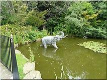 SJ6651 : Elephant in a pond by Gerald England