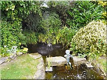 SJ6651 : Water feature by Gerald England