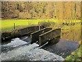 SX1567 : Weir, Warleggan River by Derek Harper